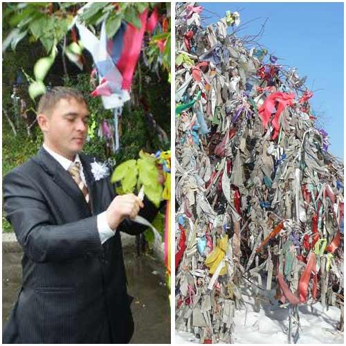 Подвязывание ленточек на свадебные деревья. Свадебные замки Традиции.